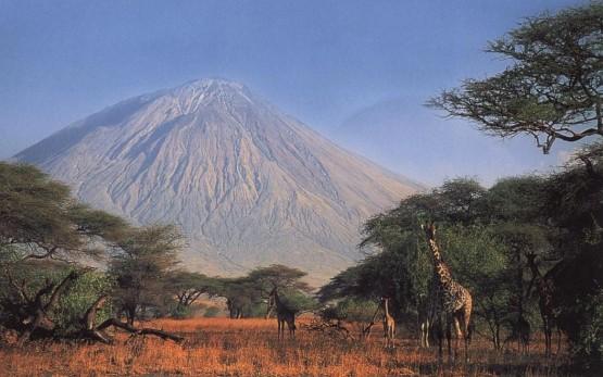 Кратерът Нгоронгоро