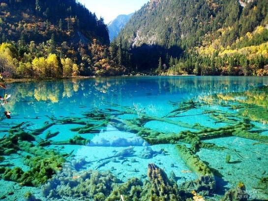 Кристално чисто езеро в националния парк Цзючжайгоу