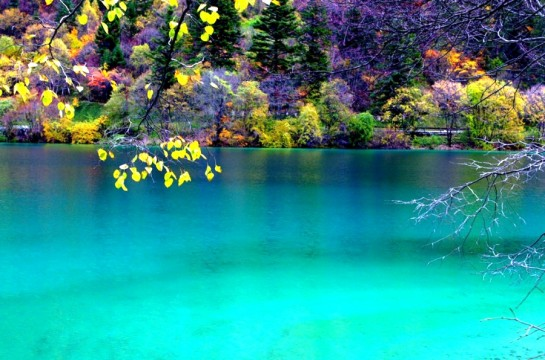 Туркуазено езеро в националния парк Цзючжайгоу - Китай