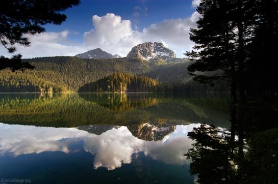 Кристално езеро в Дурмитор