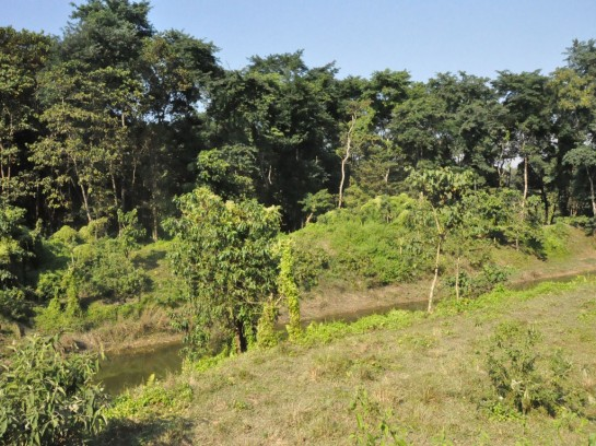 Национален парк Читван